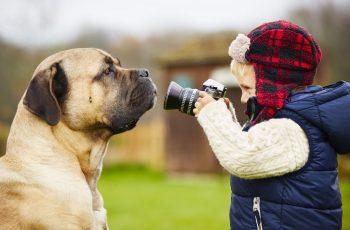Veja essas 9 dicas de como fotografar melhor animais de estimação